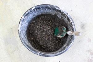 seed bomb Veru
